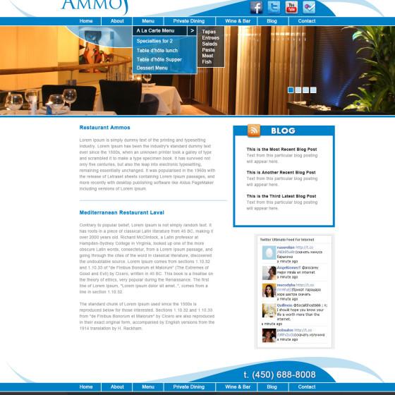 Ammos Website Design & Development